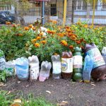 Клумба из пластиковых бутылок