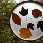 Украшаем окна листьями