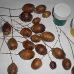 Пошаговое создание виноградных гроздей