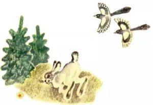 сказка хвосты про животных