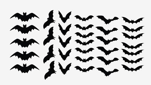 как сделать шаблон летучей мыши