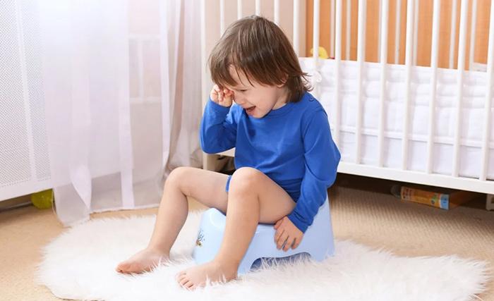 ребенок не садится на горшок что делать