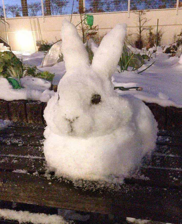 поделки из снега на участке