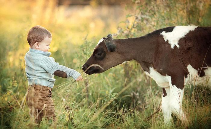 какие будут дети рожденные в год быка