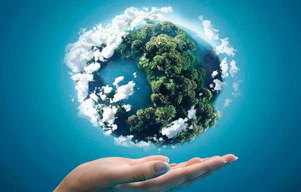 Экологическая викторина леса России