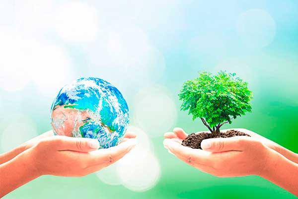 Экологическая викторина овощи