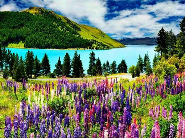 Стихи про красоту природы