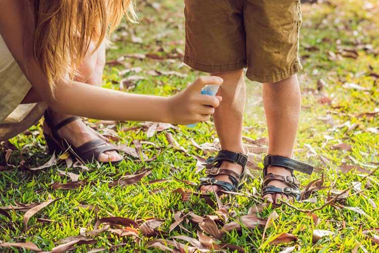 средства защиты на пикнике с детьми