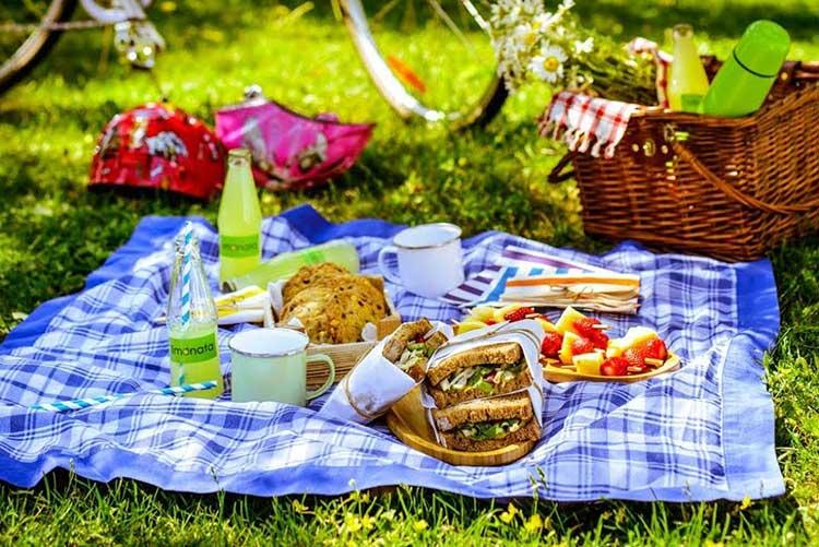 что взять на пикник с детьми