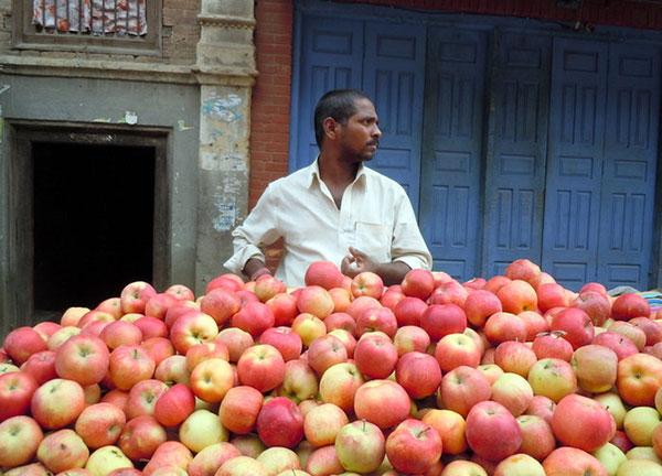загадка от илона маска про яблоки