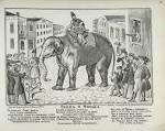 Слон на воеводстве