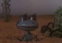 Лягушонок ищет папу