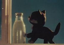 Почему ушел котенок?