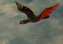 Прежде мы были птицами