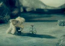 Про мамонтенка