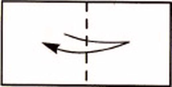 Центральная линия