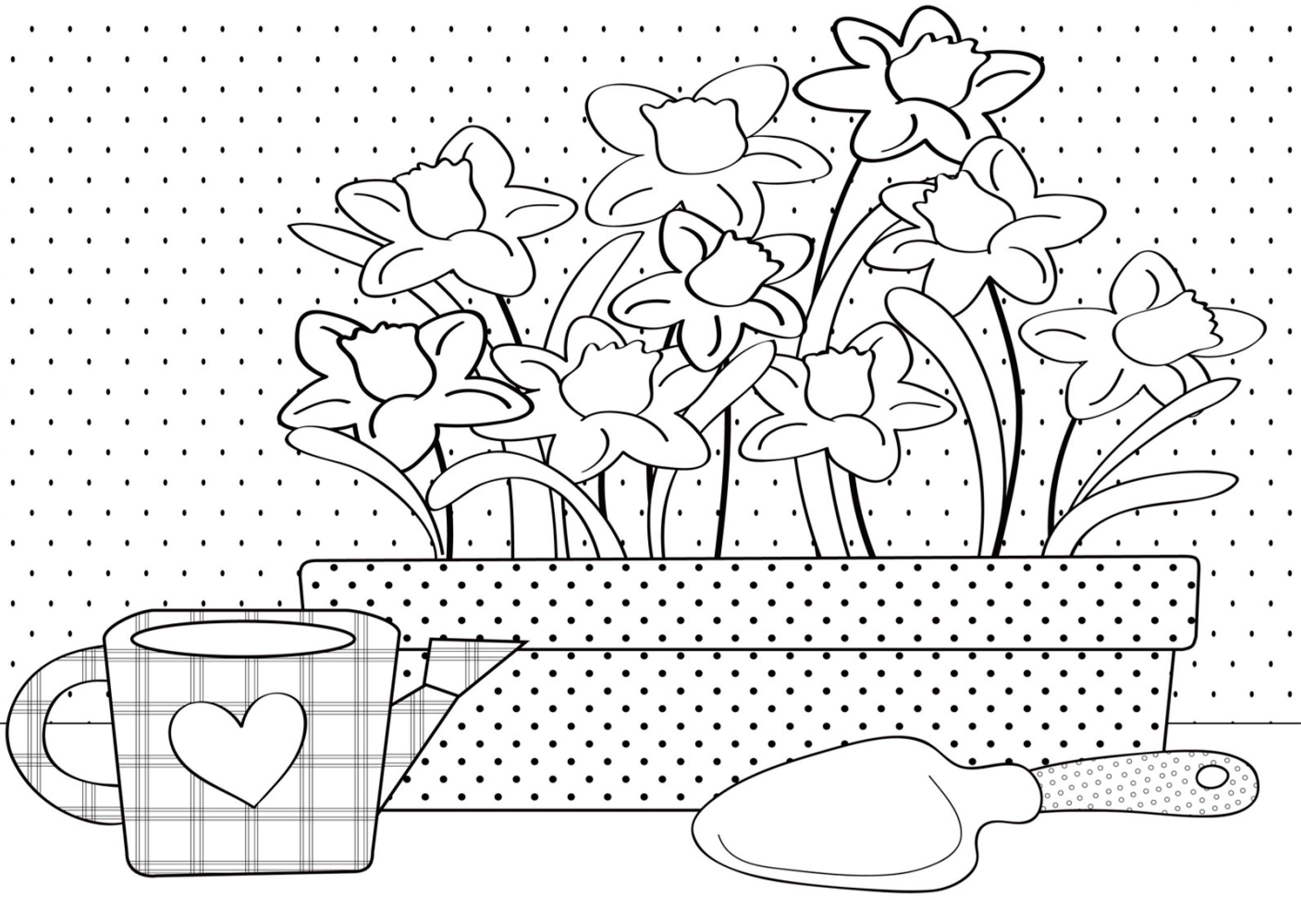 Раскраска Весенние цветы распечатать или скачать бесплатно