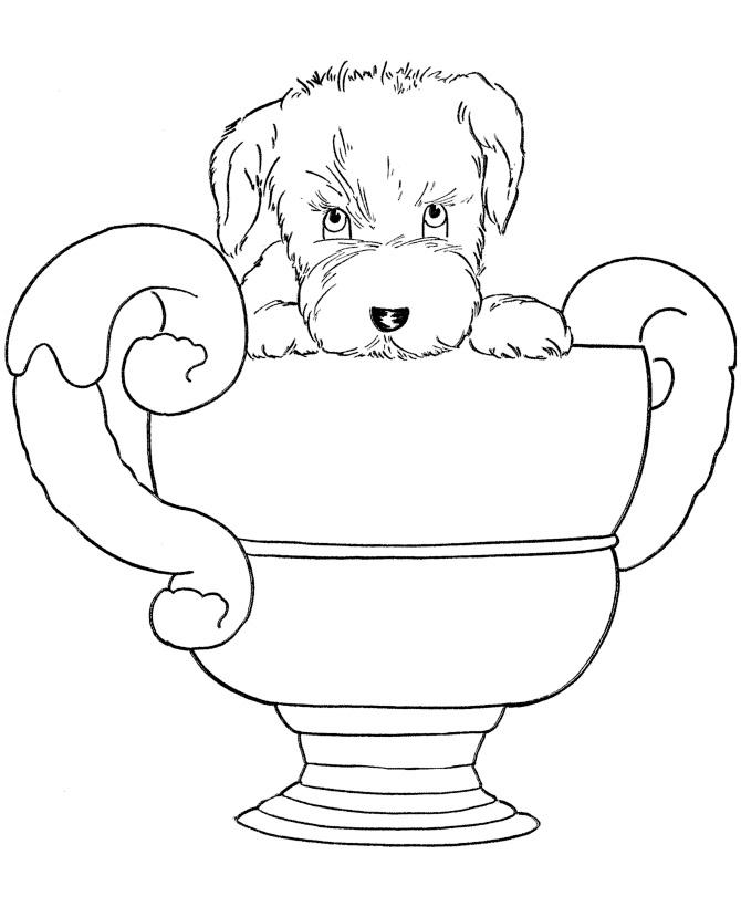 Раскраска Собака получила приз распечатать или скачать ...