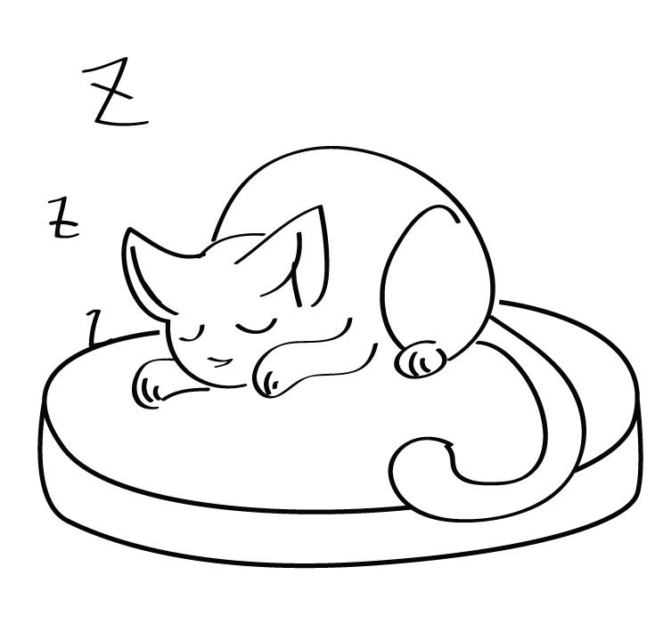 Раскраска Котенок сладко спит распечатать или скачать ...