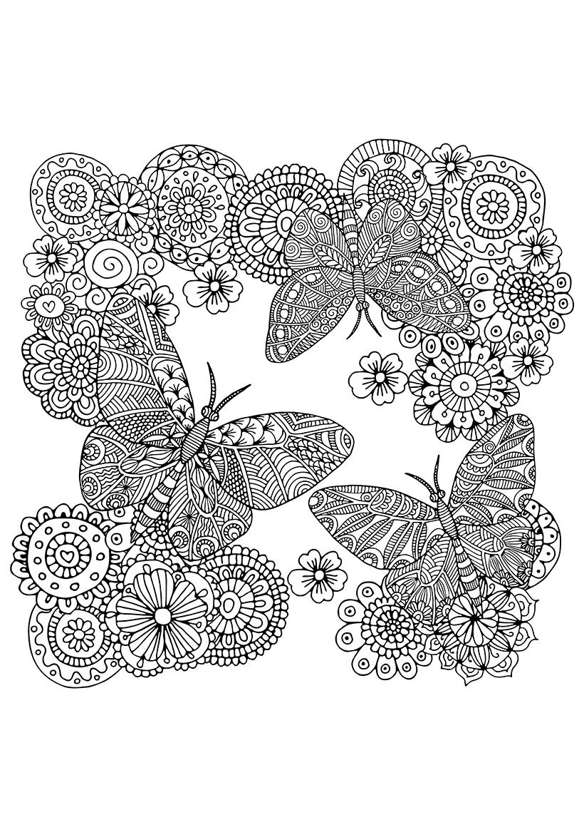 Раскраска Цветы и бабочки распечатать или скачать бесплатно