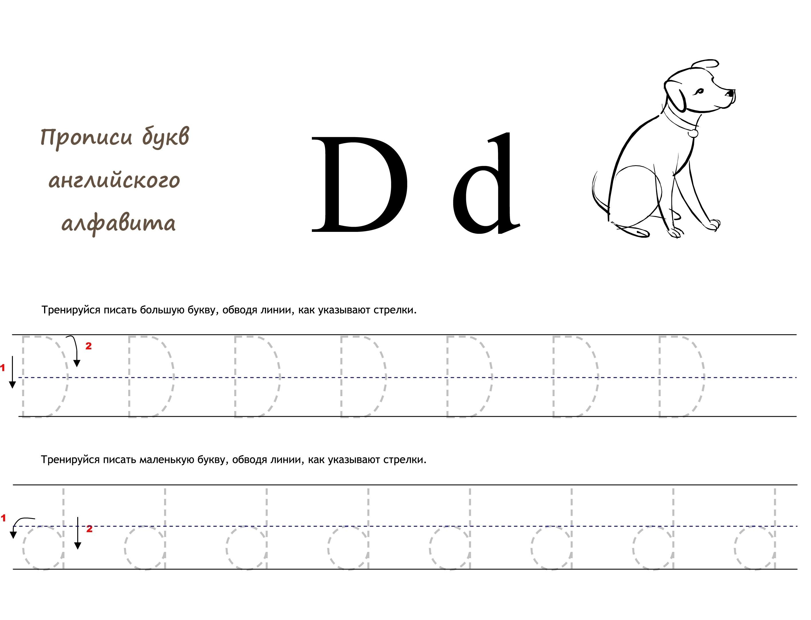 Раскраска Английская буква D прописью распечатать или ...