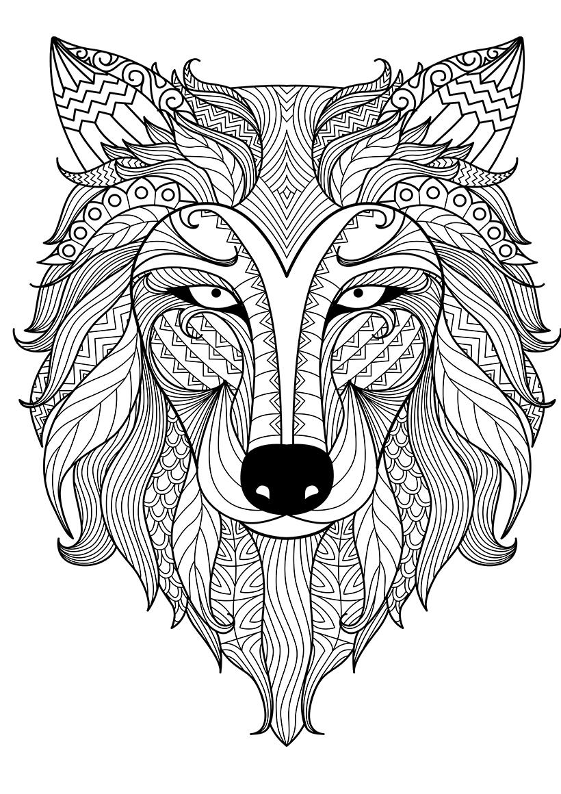 Раскраска Голова волка распечатать или скачать бесплатно