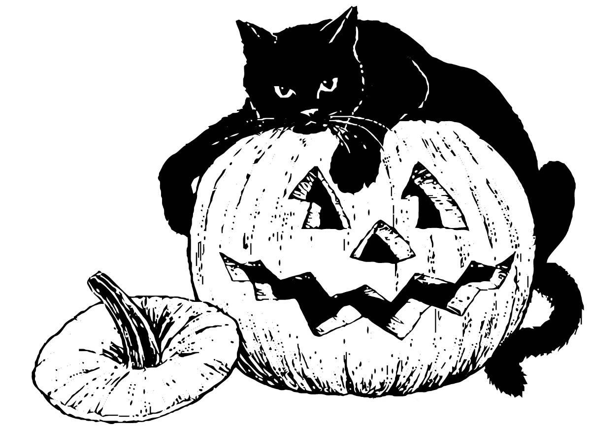 Раскраска Кот на тыкве распечатать или скачать бесплатно