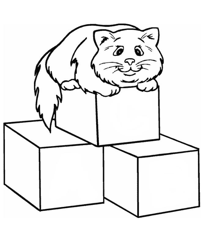 Раскраска Кошка на кубиках распечатать или скачать бесплатно