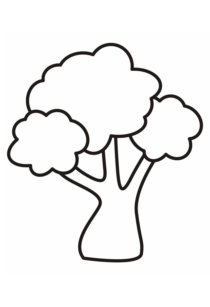 Раскраска Дерево с красивой кроной распечатать или скачать ...