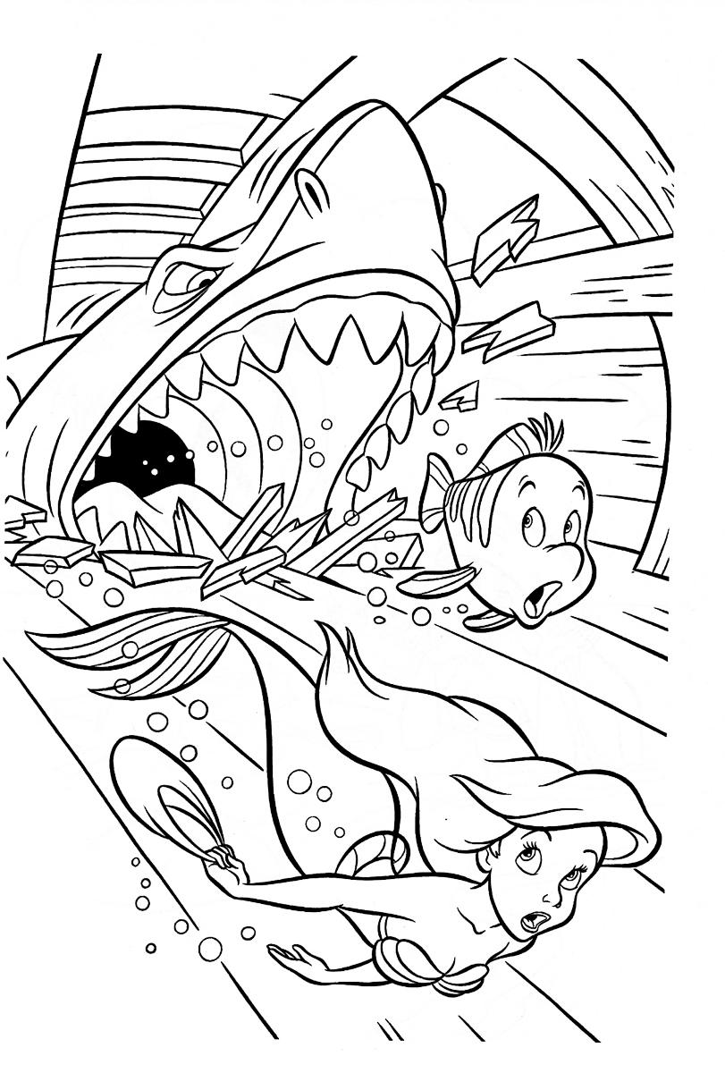 Раскраска Русалочка и акула распечатать или скачать бесплатно