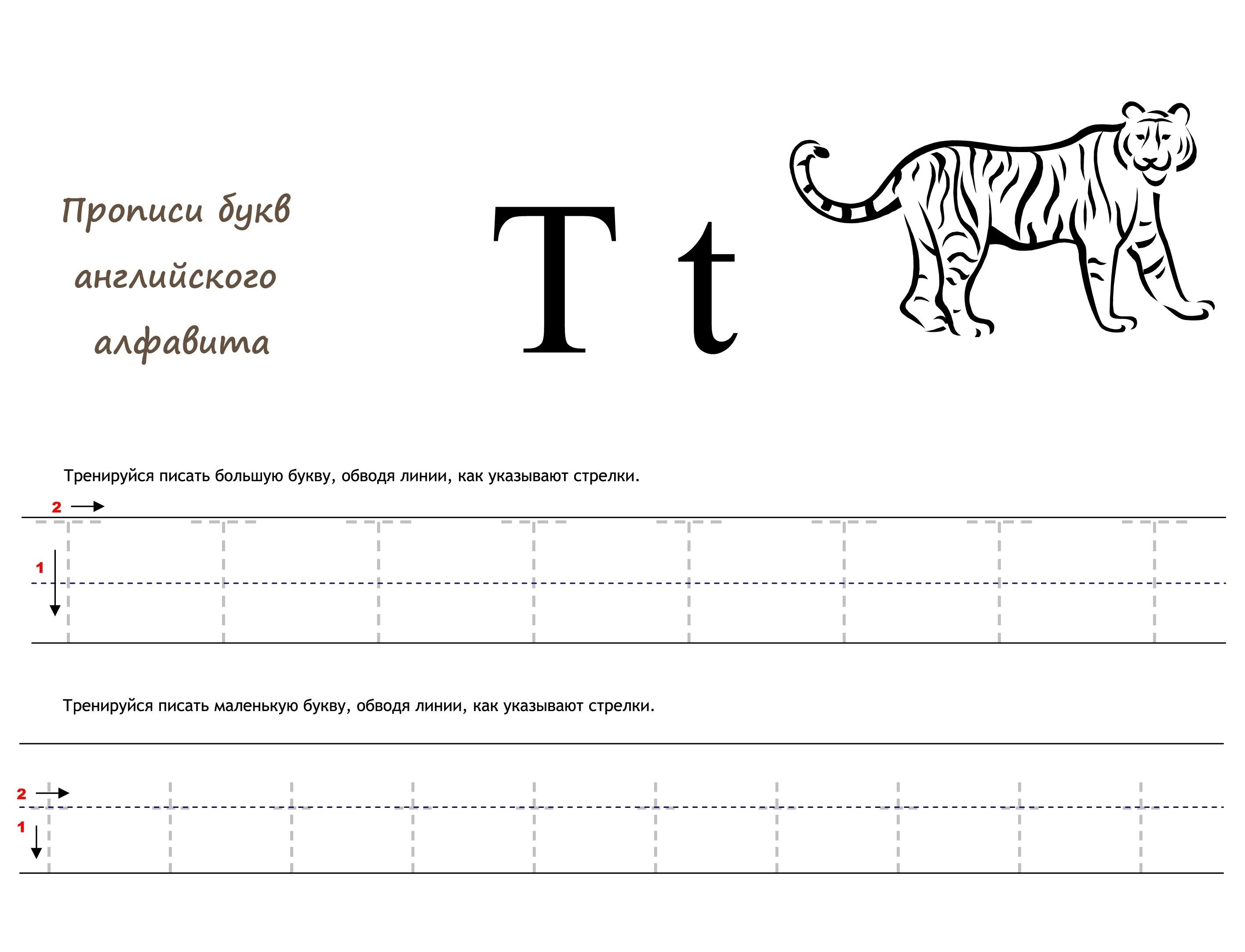 Раскраска Английская буква T прописью распечатать или ...