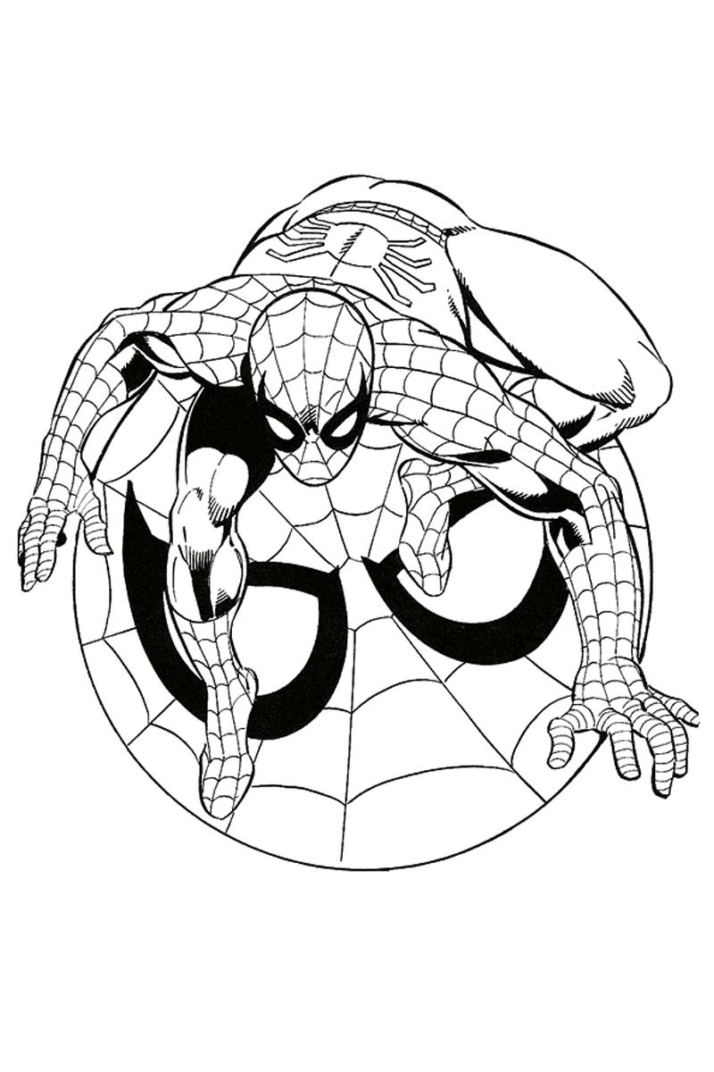 Раскраска Символ Человек-паук распечатать или скачать ...