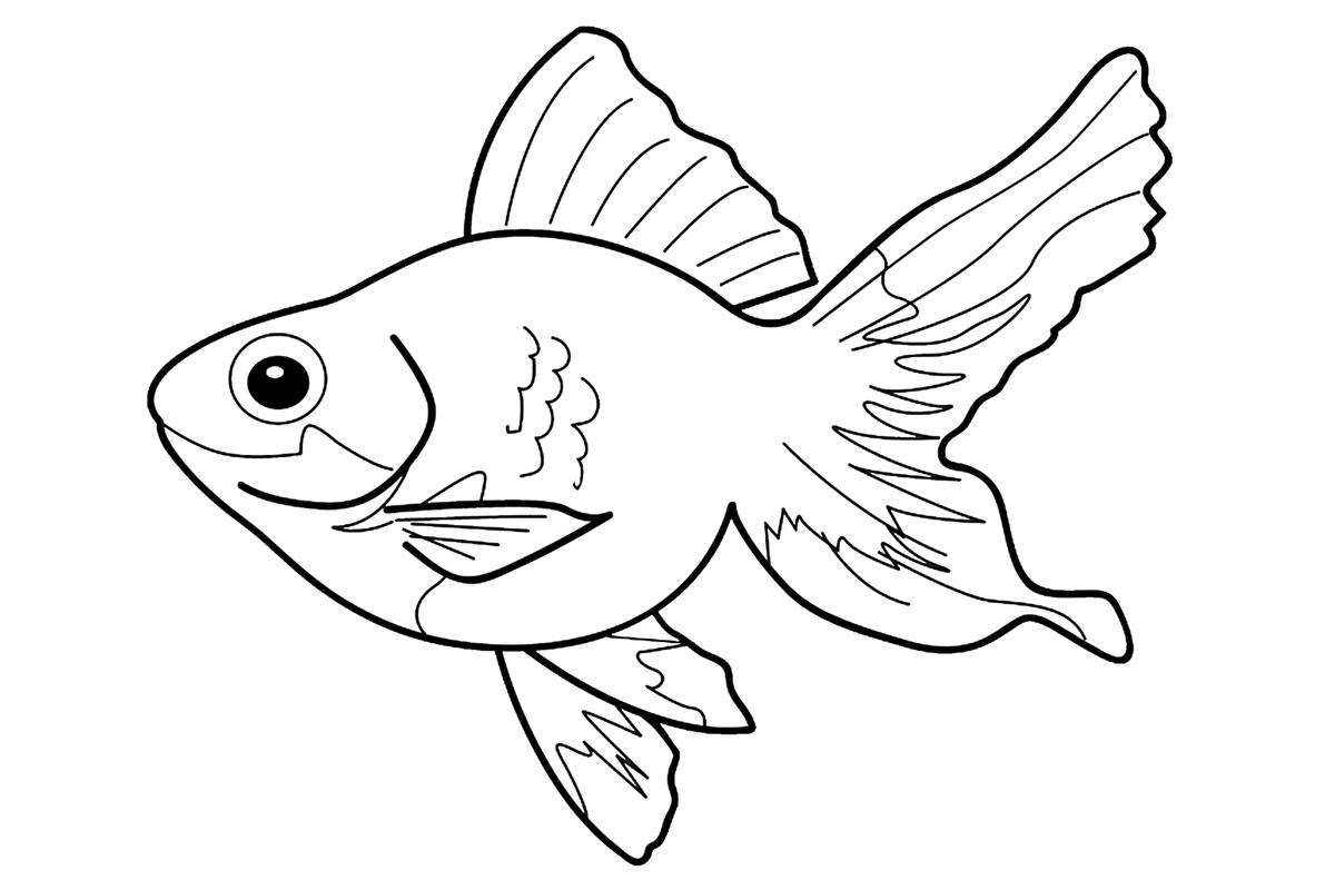 Раскраска Рыбка счастья распечатать или скачать бесплатно