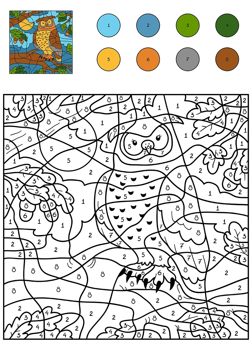 Раскраска Сова по цифрам распечатать или скачать бесплатно