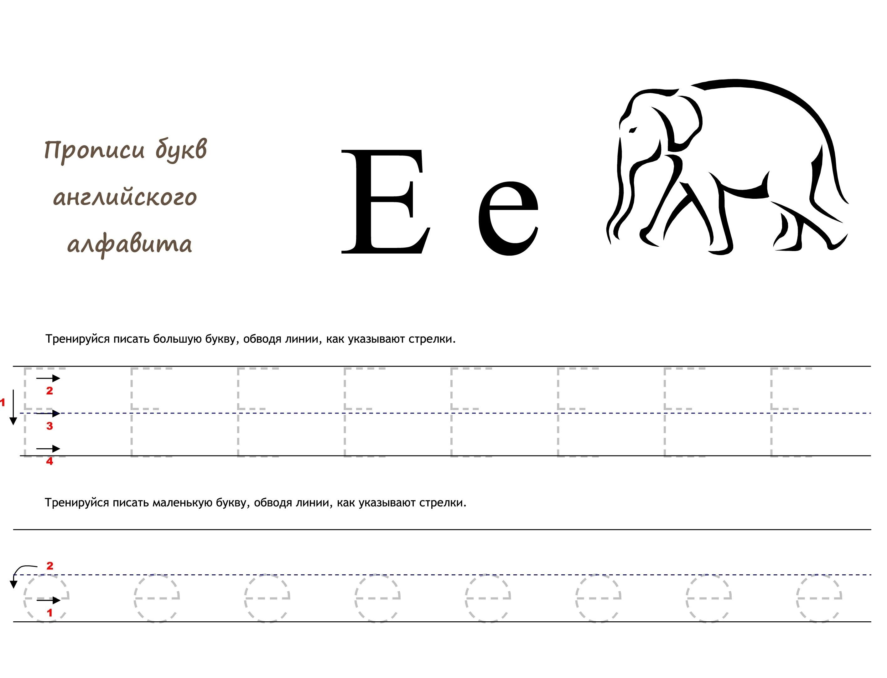 Раскраска Английская буква E прописью распечатать или ...