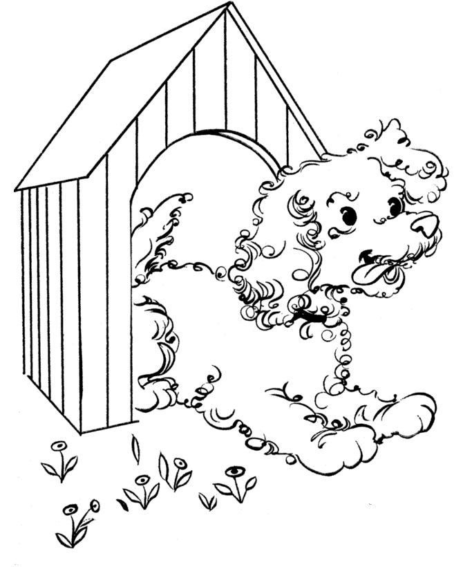 раскраска собака выглядывает из будки распечатать или