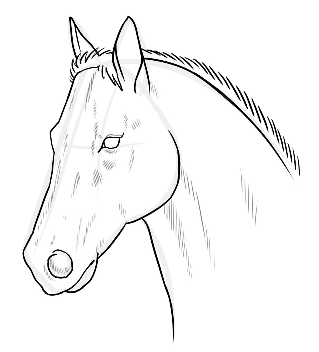 картинка головы коня для качеству сразу