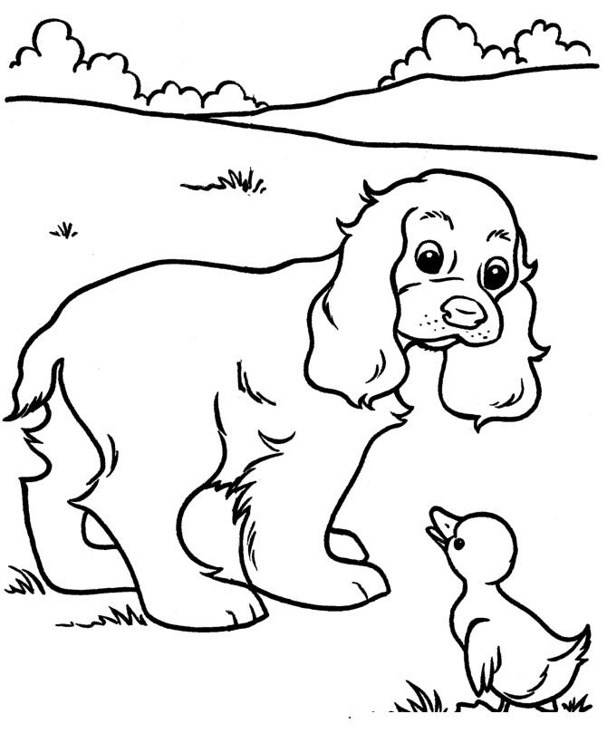Раскраска Собака и уточка распечатать или скачать бесплатно