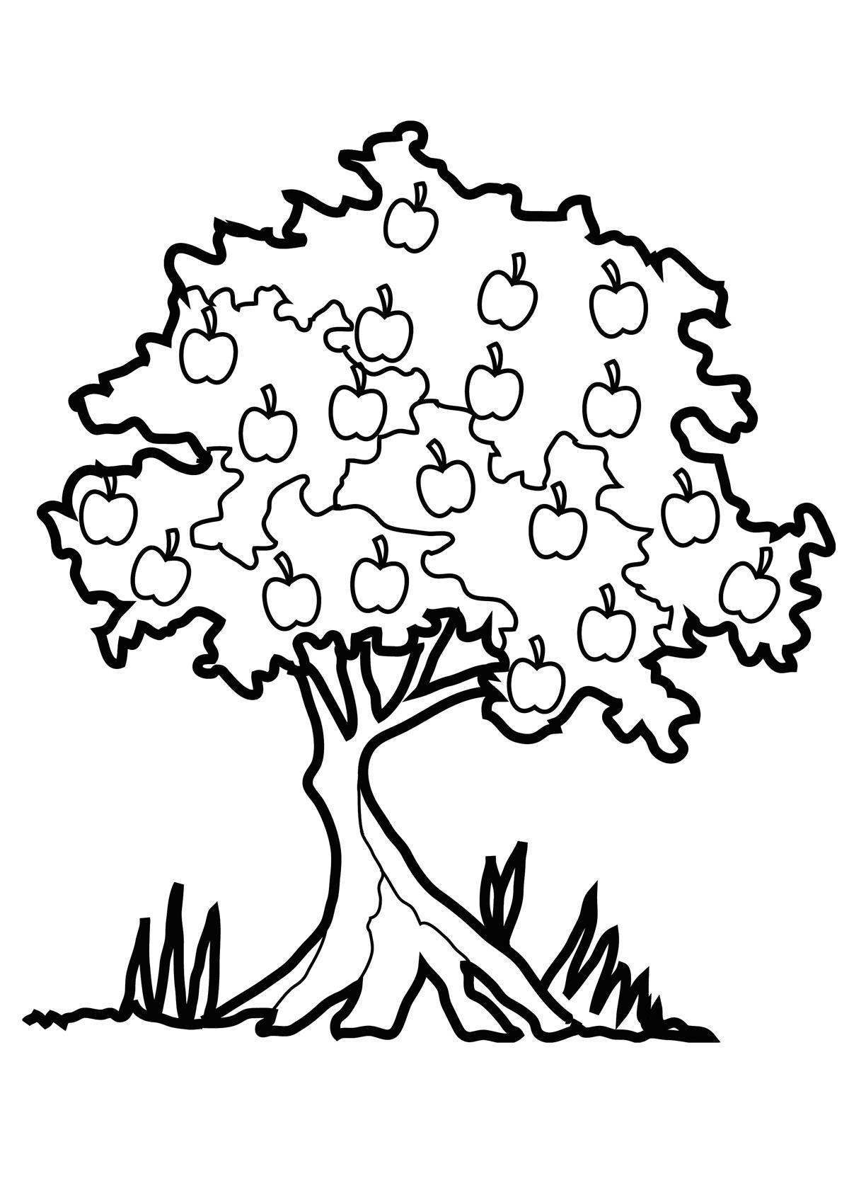 Раскраска Яблоня осенью распечатать или скачать бесплатно