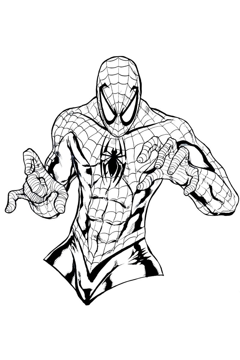 Раскраска Человек-паук распечатать или скачать бесплатно