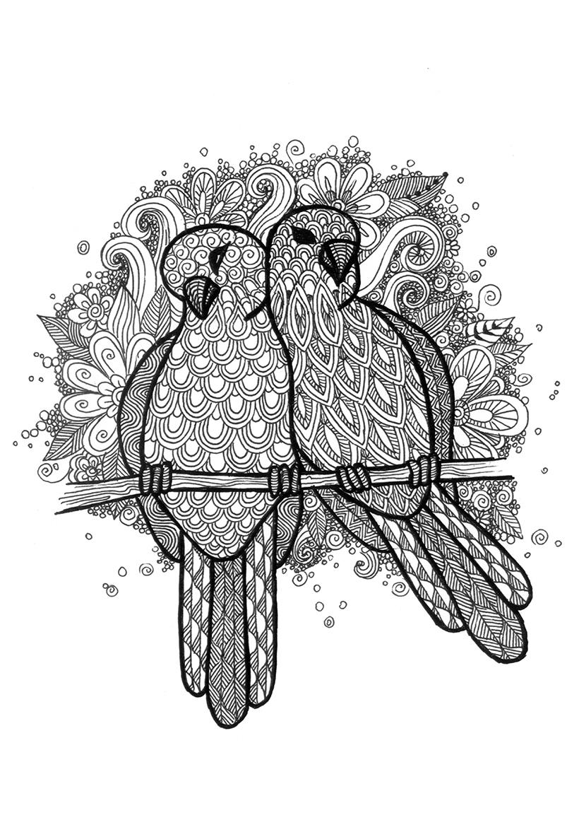 Раскраска Влюбленные голубки распечатать или скачать бесплатно