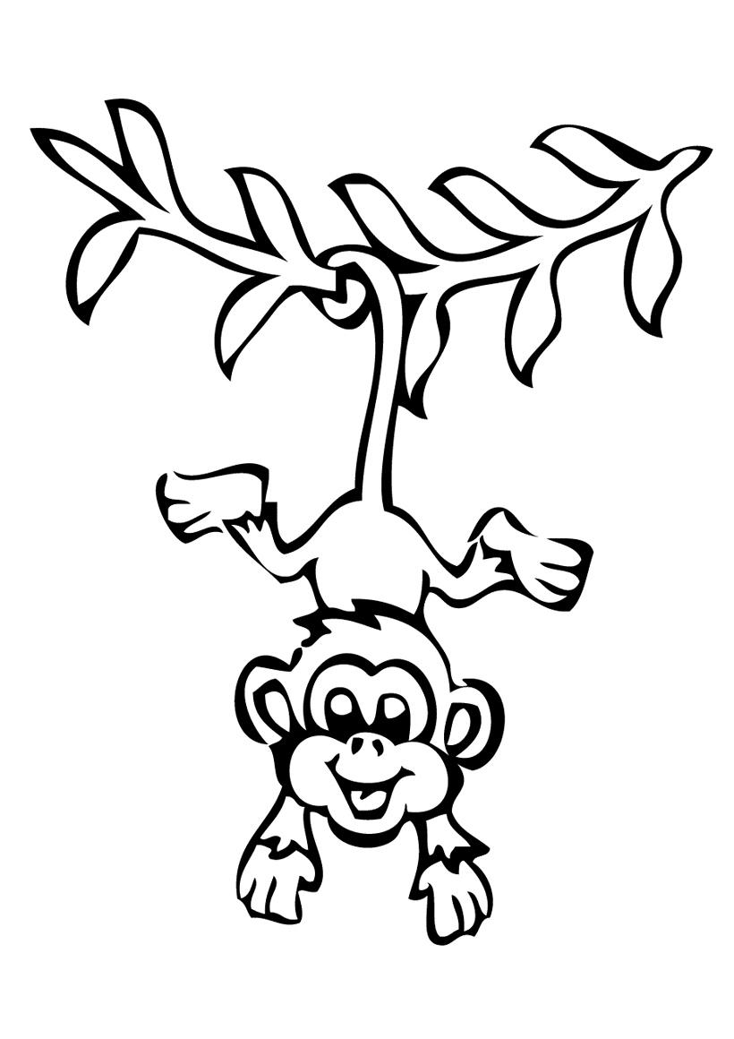 Раскраска Обезьяна на ветке распечатать или скачать бесплатно