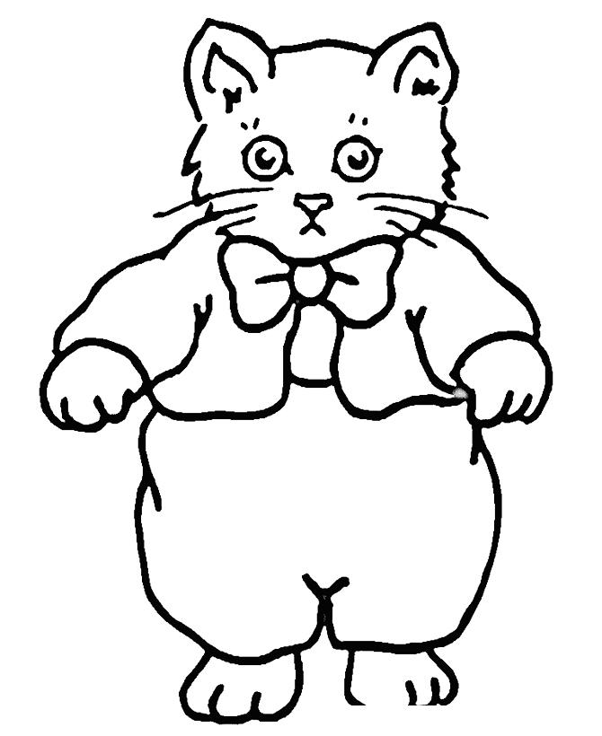 Раскраска Котенок в кофточке распечатать или скачать бесплатно