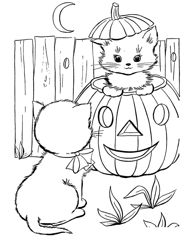 Раскраска Котята на тыкве распечатать или скачать бесплатно