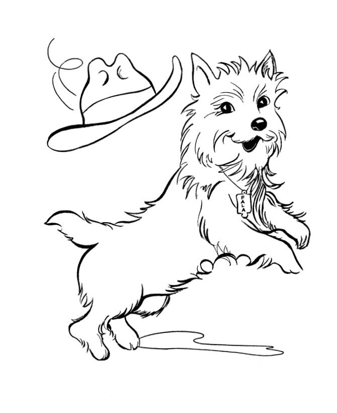 раскраска собака и шляпа распечатать или скачать бесплатно