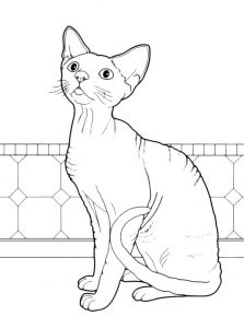 Раскраска Кошка и игрушка-бантик распечатать или скачать ...