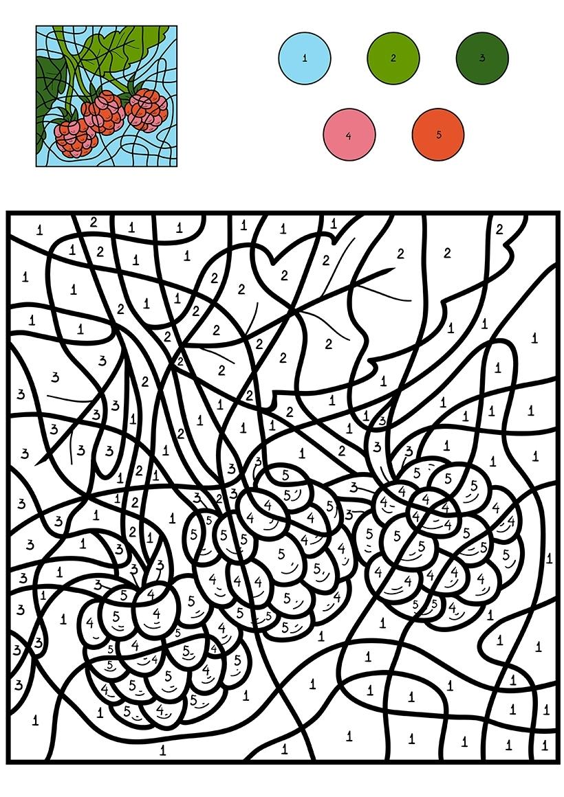 Раскраска Малина по цифрам распечатать или скачать бесплатно