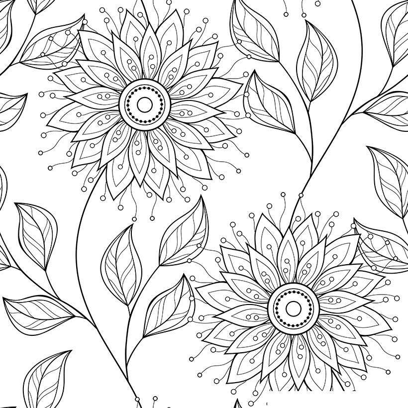 Раскраска Антистресс Крупные цветы распечатать или скачать ...