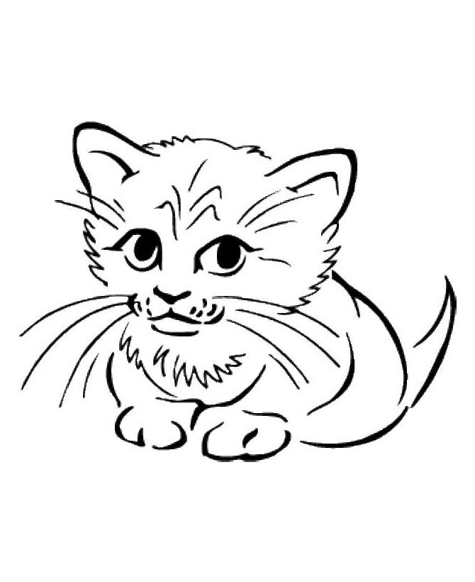 Раскраска Котик расстроился распечатать или скачать бесплатно