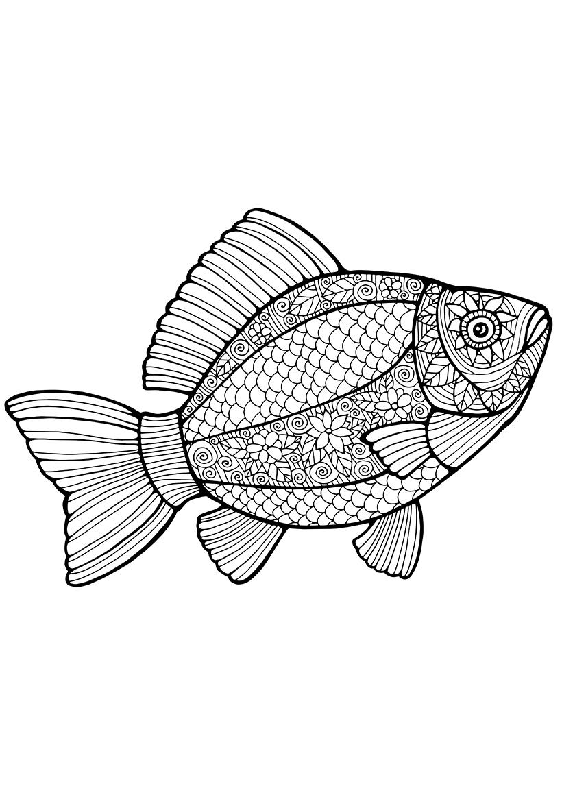 Раскраска Рыбка распечатать или скачать бесплатно